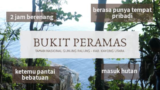 Main Ke Hutan Tepi Pantai di Bukit Peramas, Taman Nasional Gunung Palung
