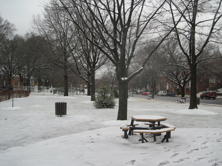 The picnic area, winter 2012