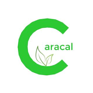 Caracal Coin airdrop