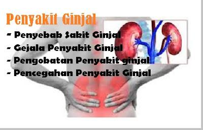 jenis - jenis penyakit ginjal dan gejala serta pengobatan penyakit ginjal