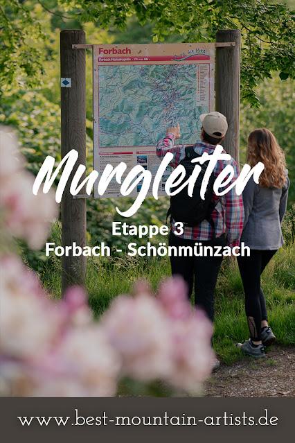 Premiumwanderweg Murgleiter | Etappe 3 von Forbach nach Schönmünzach | Wandern nördlicher Schwarzwald 15