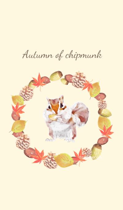 Autumn of chipmunk