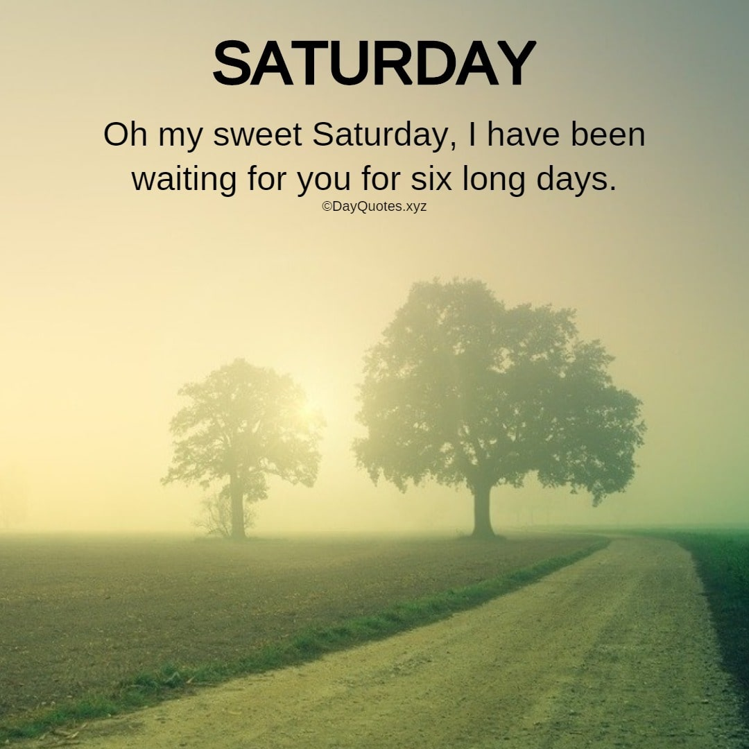 Saturday Quotes With Images To Share On Social Profiles