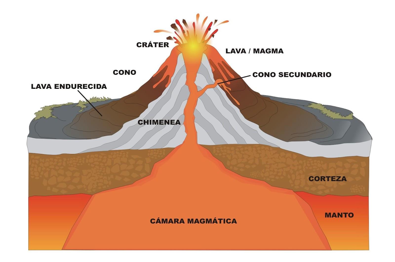 stratovolcano diagram with labels sympathetic and parasympathetic violetas: volcÁn - vulcano