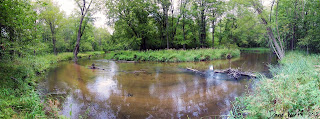 panoramic photo of river, michigan manistee national forest, trail, camp