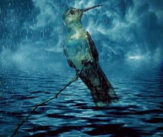डूबते को तिनके का सहारा