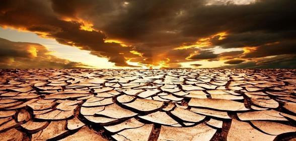 problema de la desertificacion