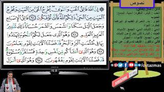 غلاف شرح نص تبارك الله أحسن الخالقين- نصوص الصف الثاني الإعدادي الفصل الدراسي الثاني