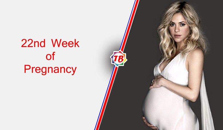 22nd week of pregnancy