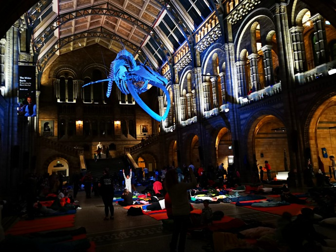 Dinosnores at the Natural History Museum, sleepover in the history museum, Dinosnores, themummyadventure.com