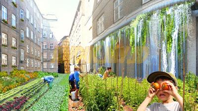 urban farming, pertanian, berkebun, pertanian perkotaan,