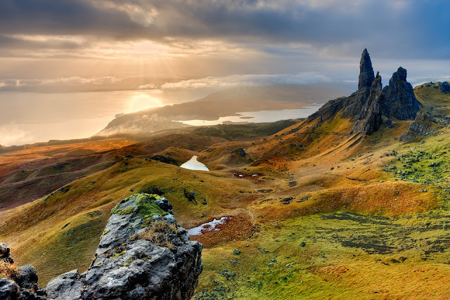vegan scotland