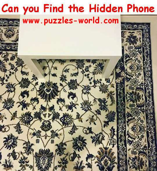 Phone hidden in the Picture