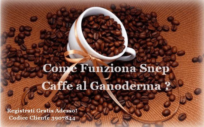 Snep Caffe