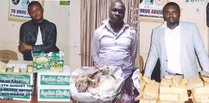 NDLA nabs travelers with Indian hemp concealed in groceries and footwear at Enugu airport