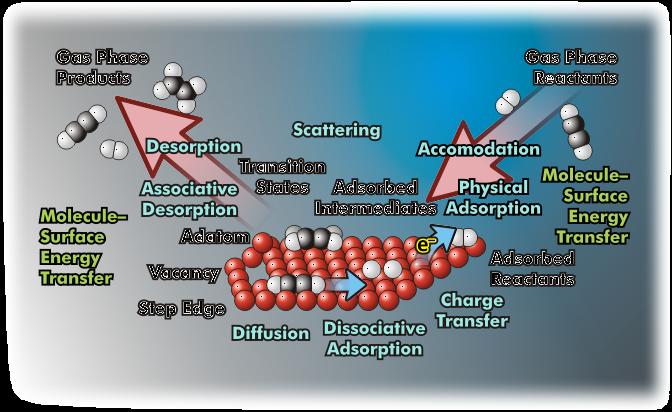 CBSE Class 12 Chemistry Notes - Surface Chemistry