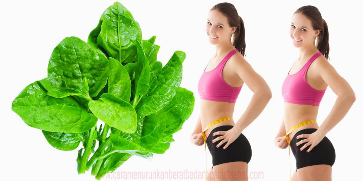 Kegunaan Sayur Bayam Dalam Menurunkan Berat Badan 5 kg