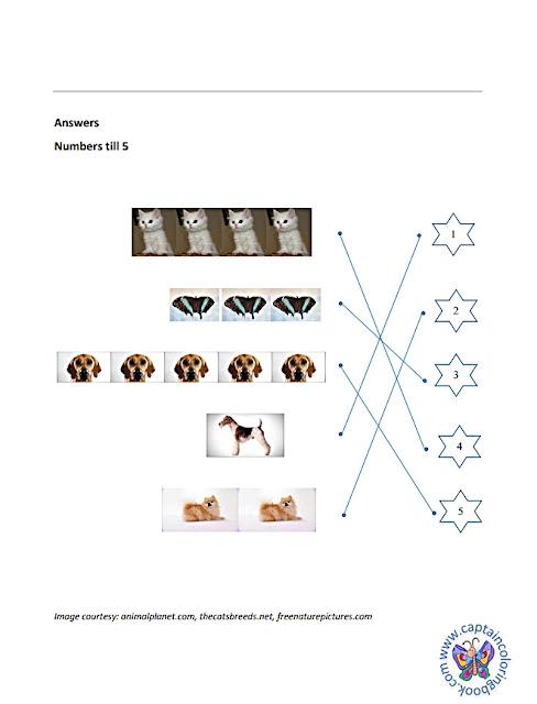Mathematics Worksheets - 1