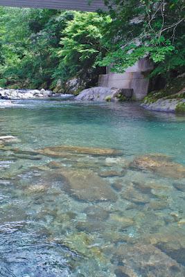 透明度の高い川