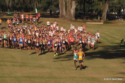 FHSAA 3A Boys' Cross Country Championship
