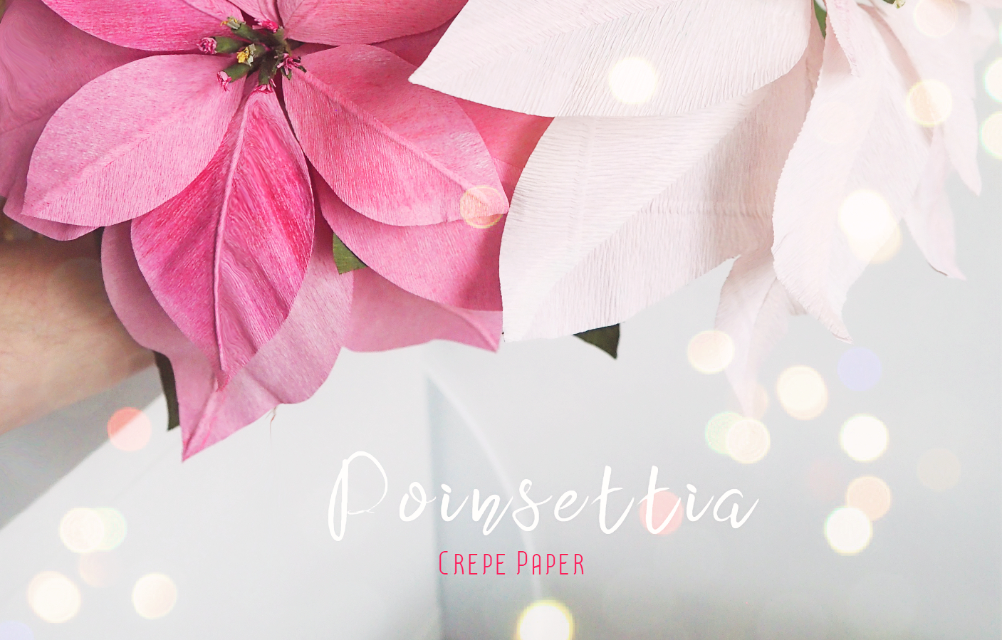Colorful Potted Poinsettias - crepe paper design