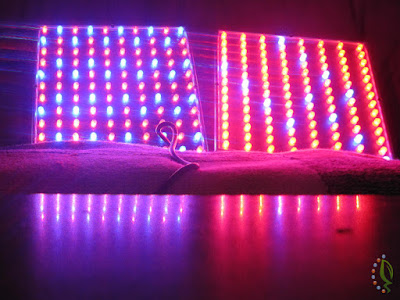 LED Grow Light Panel 45 Watt in den Varianten Blütezeit und Wachstum