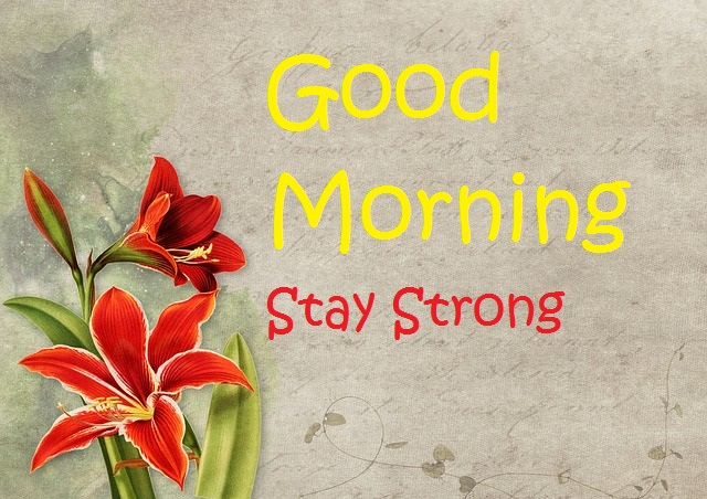 Wishes of Good Morning with Images with Flowers