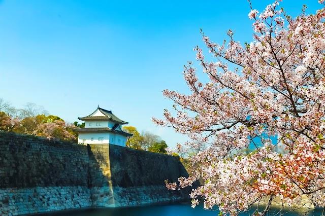 TST tourist tham dự Ngày hội du lịch Nhật Bản 2019 Tp.HCM