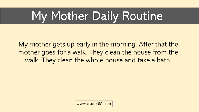 My Mother Daily Routine - Study95
