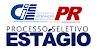 Ciee - PR anuncia nova seleção com 400 vagas para Estágio em diferentes áreas!