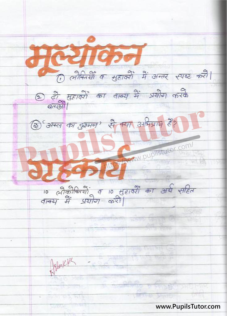 Idiom Lesson Plan in Hindi   Proverb Lesson Plan in Hindi