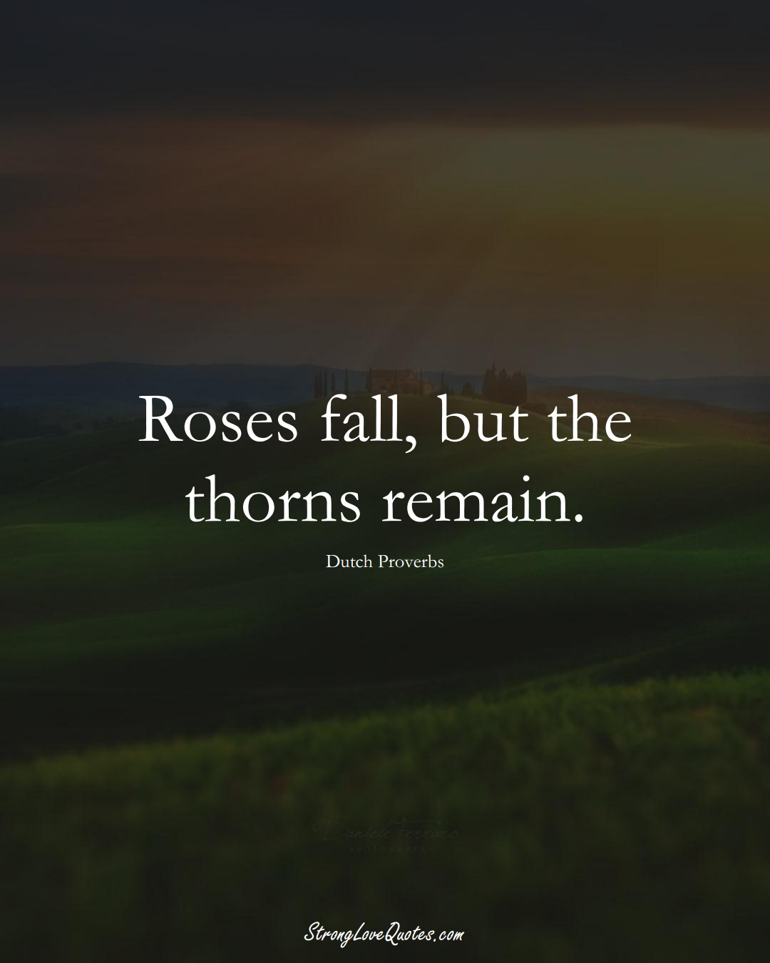 Roses fall, but the thorns remain. (Dutch Sayings);  #EuropeanSayings