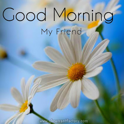 Good Morning Friend Images, Good Morning Best Friend Images, Good Morning dearest Friend Images, Good Morning Friend Images hd, Good Morning Friendship Quotes Images, Good Morning dear Friend images, Good Morning My Sweet Friend Images, Good Morning Images For Friends in Hindi, Images Of Good Morning Friend, Good Morning Friend Message, Good Morning my Friend, Good Morning Friends Photo, Good Morning Friends Pic, Good Morning All Friend, Good Morning Friends Status, Good Morning Friends Picture, Good Morning Friend Video, Good morning Friends and Family, Good Morning Friend Have a Nice Day