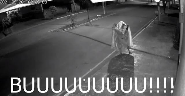 """""""Ladrão fantasma"""" ataca na cidade de Fênix"""