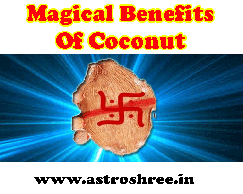 all about Magical Benefits of Coconut in english by astrologer om prakash