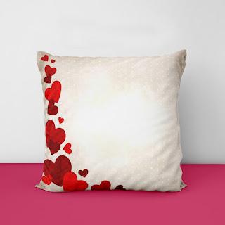 bird pillow covers