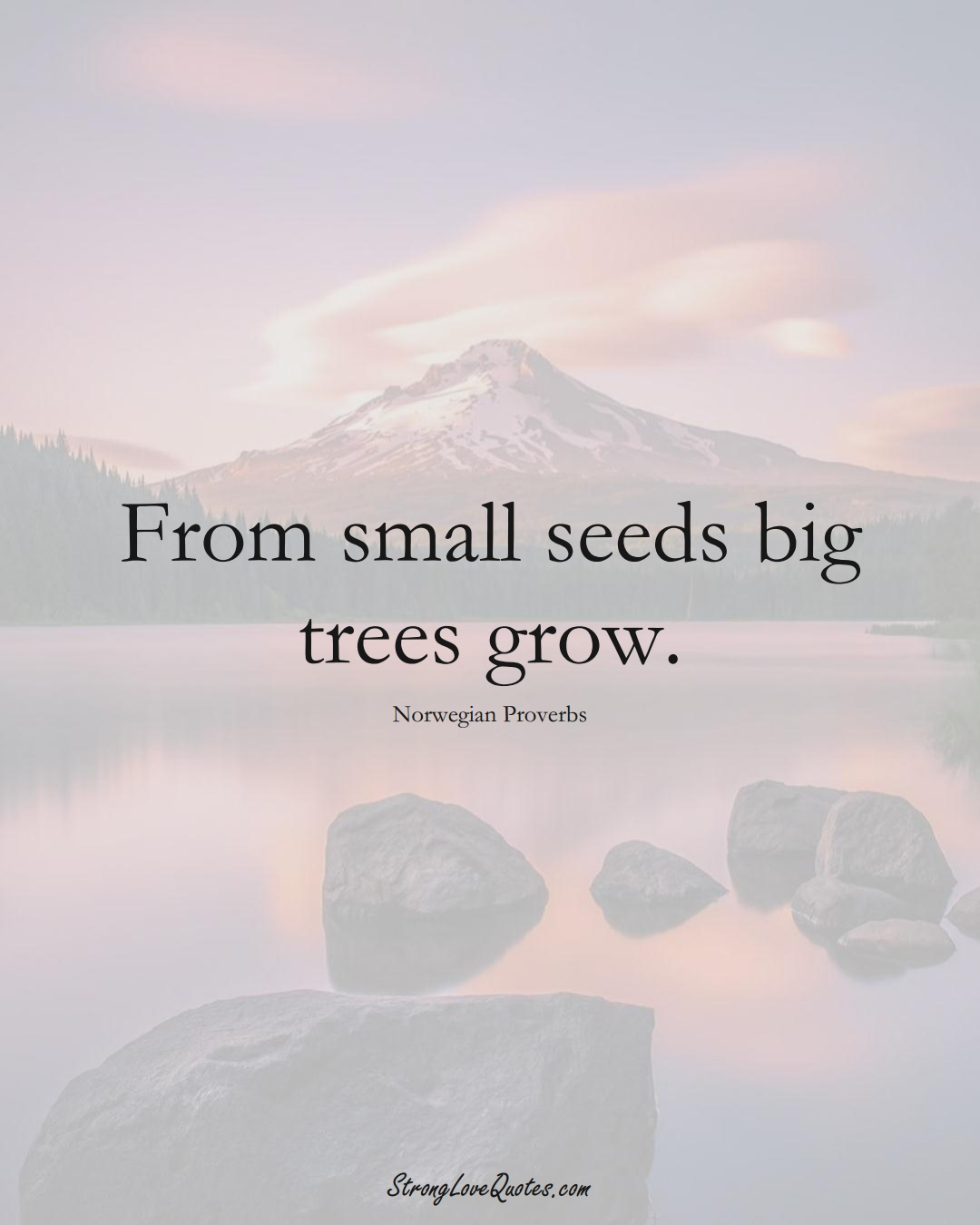 From small seeds big trees grow. (Norwegian Sayings);  #EuropeanSayings