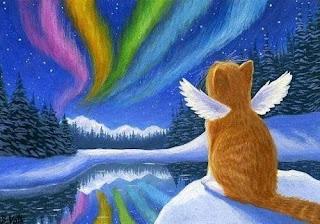 Puente del Arcoíris - Un mensaje para todos aquellos que han perdido un gato