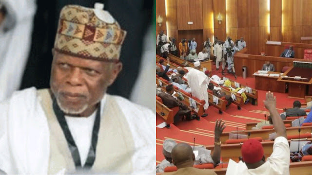 Senate demands resignation of customs boss, Hameed Ali, says he is 'Over-aged, Unfit'