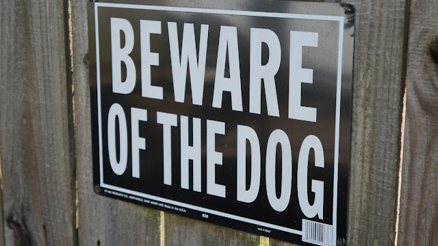Don't tether dogs, and other insights into dog bite prevention from Detroit. Photo shows Beware of Dog sign