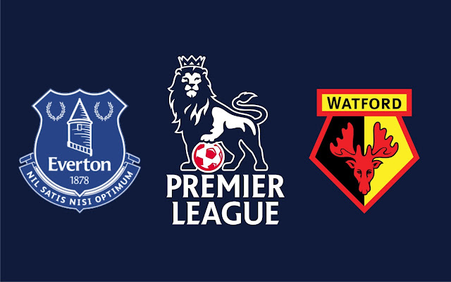 Everton vs Watford Full Match & Highlights 5 November 2017