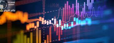الاكتتاب في رأس المال لشركات المساهمة