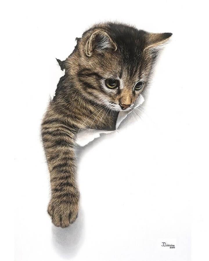 10-Cat-tearing-through-Julia-Dubinina-www-designstack-co