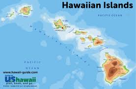 Hawaii 2020 assisted suicide report – more death – and the report demands even more death.