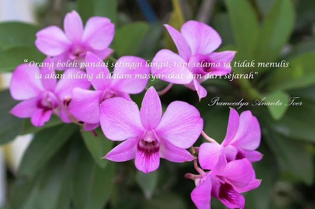 bunga-anggrek-ungu-dendrobium-4-nikmat-puasa-di tengah-pandemi-kata-motivasi