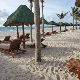 Row of Beach Chairs on Beach