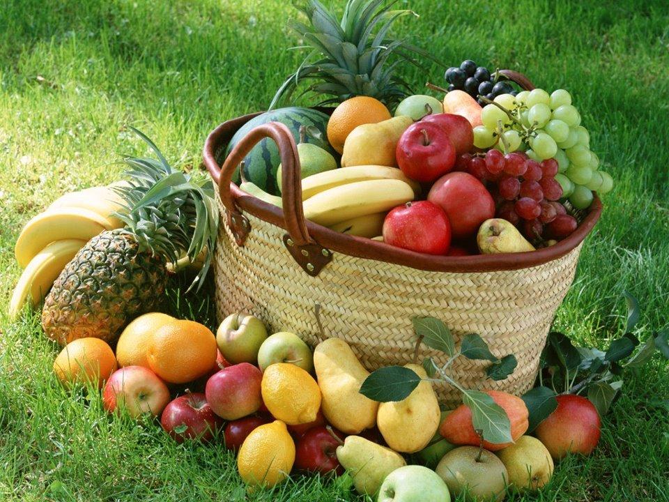 sidra para adelgazar fruta biografia