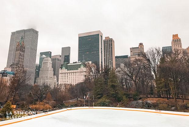 Guia de Central Park wollman rink