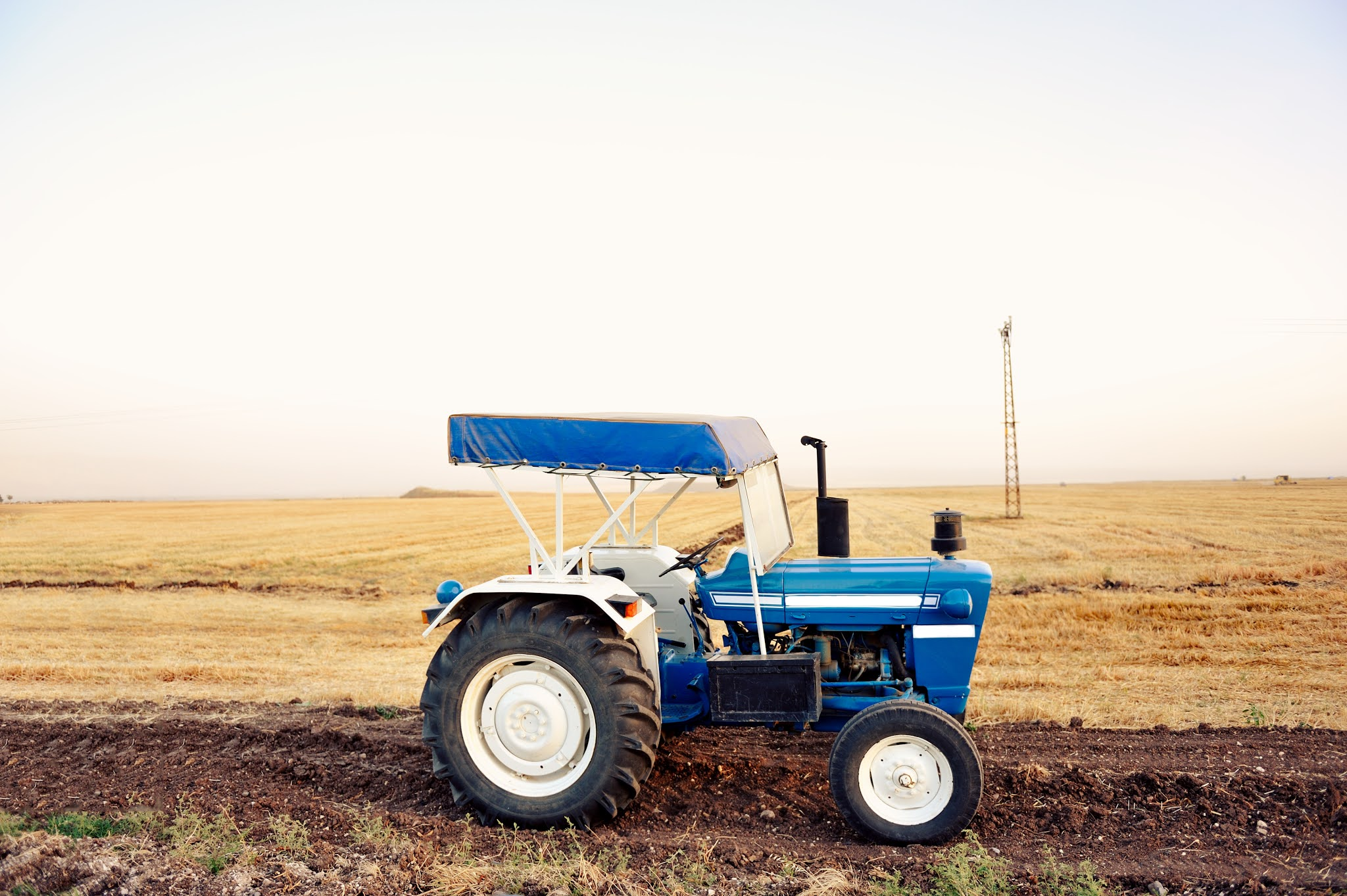 agribusiness tips