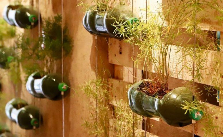65 ideas de decoración con botellas de plástico para sus plantas
